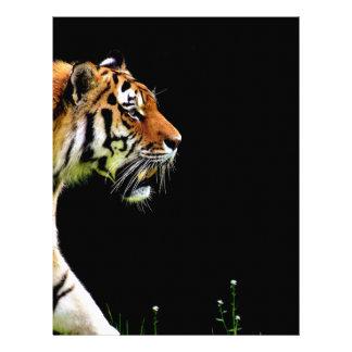 Tiger Approaching - Wild Animal Artwork Letterhead