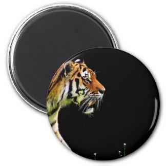 Tiger Approaching - Wild Animal Artwork Magnet