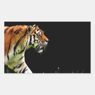 Tiger Approaching - Wild Animal Artwork Sticker