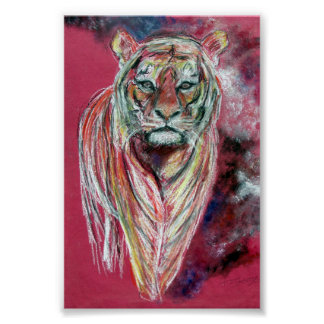 Tiger art print, Poster by Tom Conway