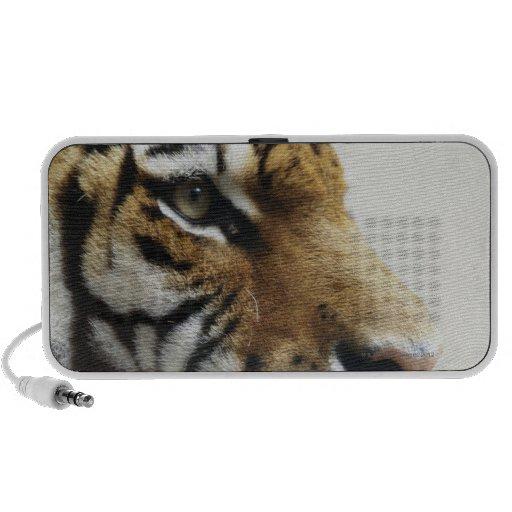 Tiger. Asahiyama Zoo, Hokkaido, Japan Notebook Speakers