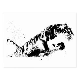 Tiger Attacking Postcard