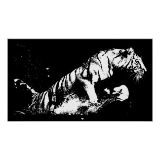 Tiger Attacking Poster Print - Tiger Black & White