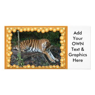 Tiger Auroara-c-1 copy Photo Card