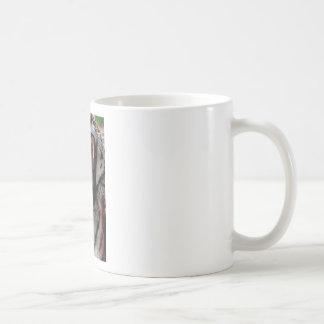 Tiger Bearing Teeth Coffee Mug