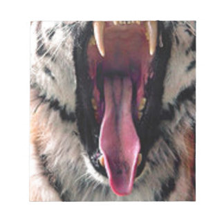 Tiger Bearing Teeth Notepad