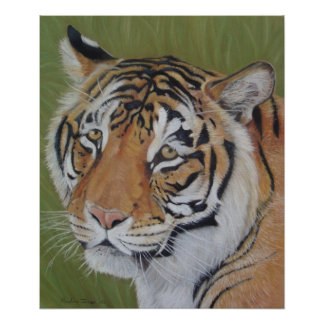 tiger big cat realist portrait art painting poster