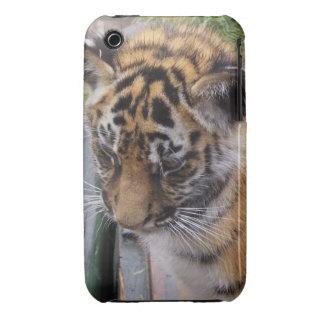 Tiger Blackberry Case