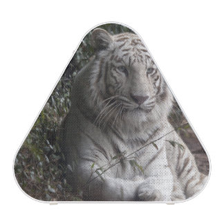 tiger blueooth speaker