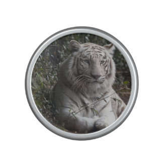 tiger bluetooth speaker