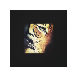 Tiger Canvas Stretched Canvas Print