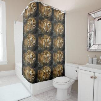 Tiger Cat Shower Bath Home Destiny'S Destiny