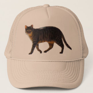 Tiger Cat Walking on multiple colored Trucker Hat