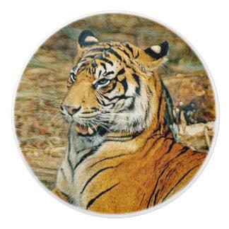 Tiger Ceramic Knob