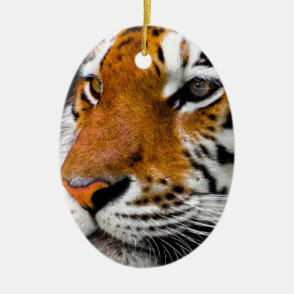 Tiger Ceramic Ornament