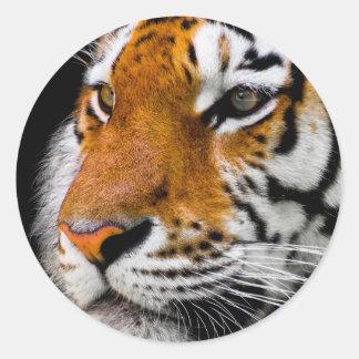 Tiger Classic Round Sticker