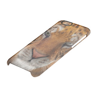 Tiger Clear iPhone 6/6S Case