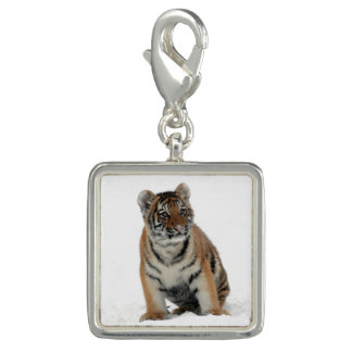 Tiger Cub in the Snow Charm