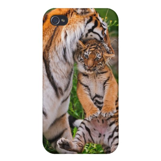 Tiger Cub with Mom - Phone case iPhone 4/4S Covers