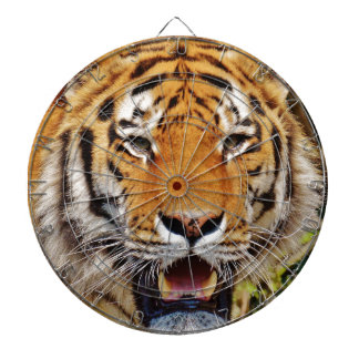 Tiger Dartboard With Darts