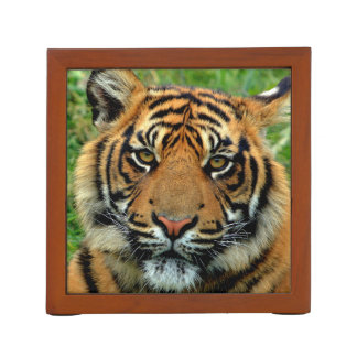 Tiger Desk Organizer