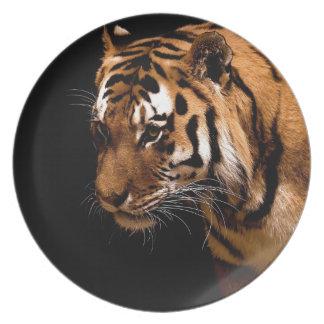 Tiger Dinner Plates