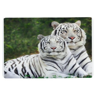 Tiger doormat floor mat