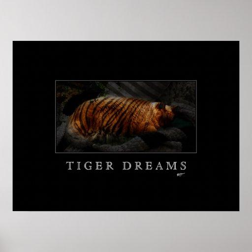 Tiger Dreams Poster