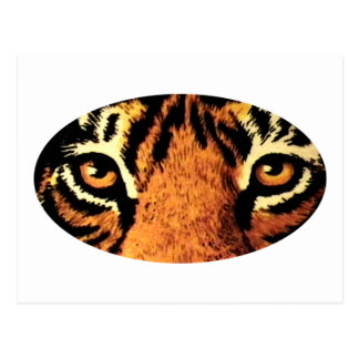 Tiger Eyes Art jGibney The MUSEUM Zazzle Gifts Postcard