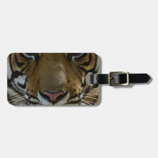 Tiger Face Close Up Luggage Tag
