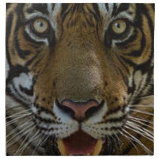 Tiger Face Close Up Napkin