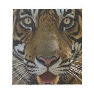 Tiger Face Close Up Notepad