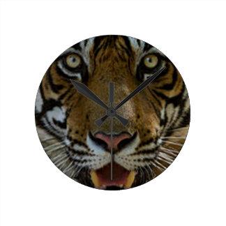 Tiger Face Close Up Round Clock
