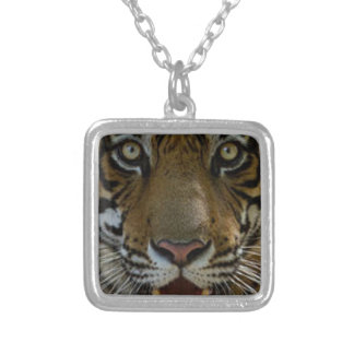 Tiger Face Close Up Silver Plated Necklace