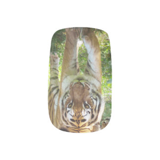 Tiger face minx nail art