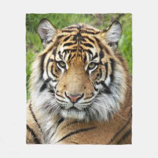 Tiger Face Photo Fleece Blanket