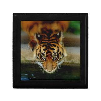 Tiger Face Trinket Boxes