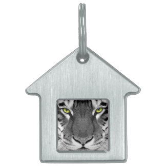 Tiger face - white tiger - eyes tiger - tiger pet tag