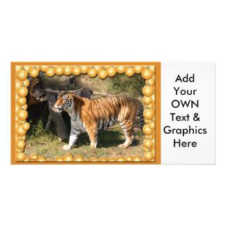 Tiger Flavio-c-1 copy Photo Cards
