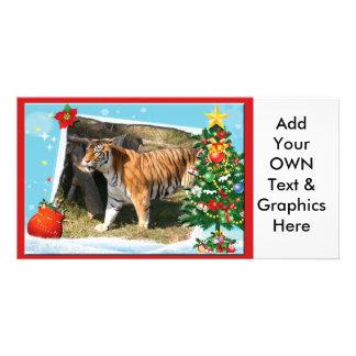 Tiger Flavio-c-2 copy Personalized Photo Card