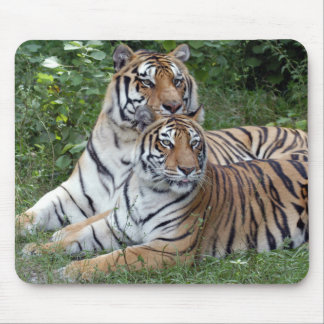 tiger-friends-b-1 mouse pad