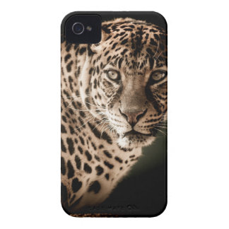 Tiger Gifts iPhone 4 Case-Mate Case