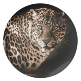 Tiger Gifts Plate