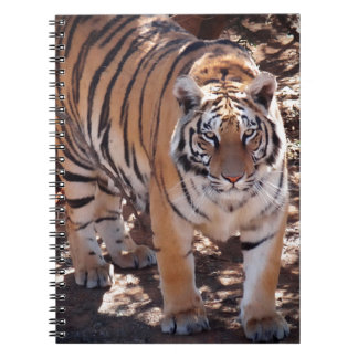 Tiger Grace Spiral Note Book