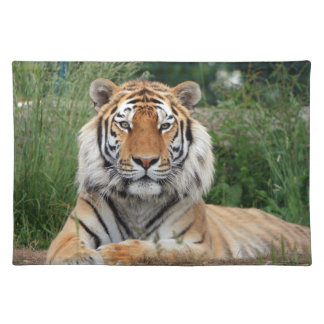 Tiger head male beautiful photo placemat