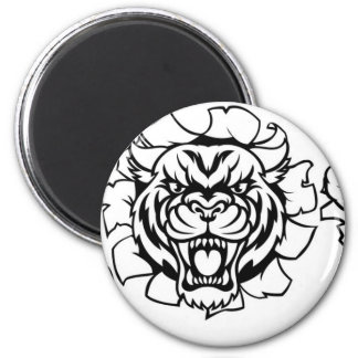 Tiger Holding Cricket Ball Breaking Background Magnet