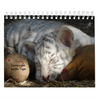 Tiger in knows as calendar