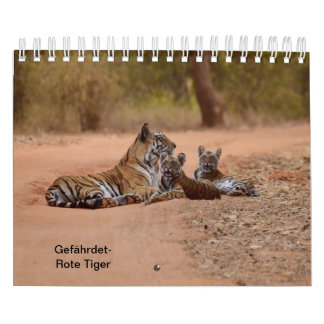 Tiger in red as calendars