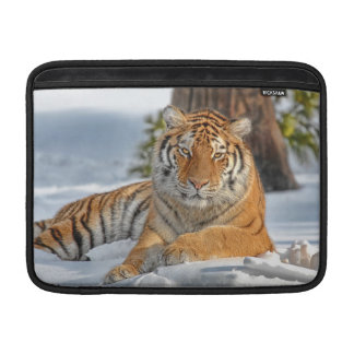 Tiger in Snow MacBook Sleeve