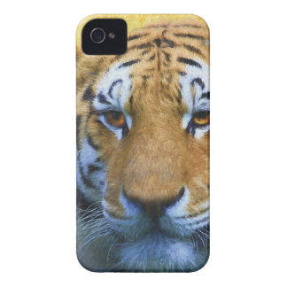 Tiger in the Bamboo - Painting Case-Mate iPhone 4 Case